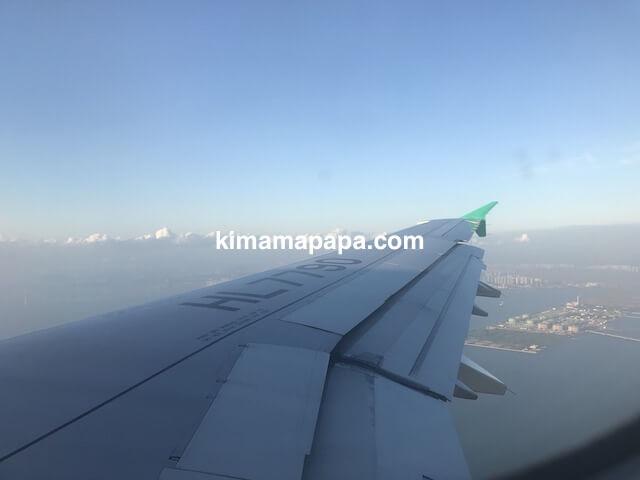 エアソウルの機内から見たソウル