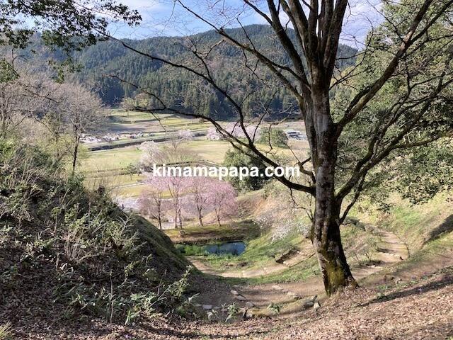 春の朝倉氏遺跡、山道から見た朝倉館跡