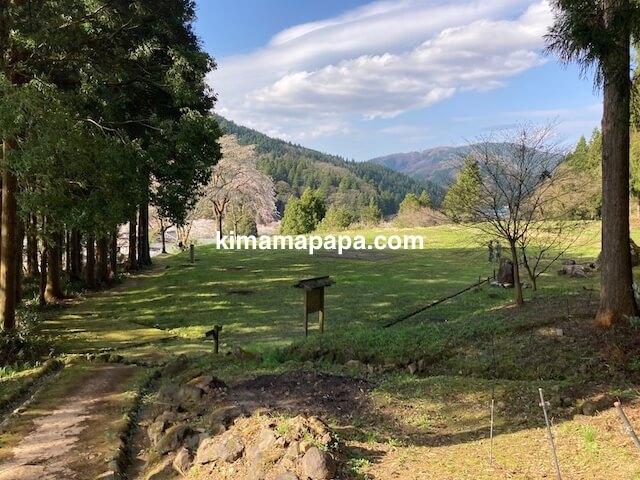 春の朝倉氏遺跡、南陽寺跡庭園