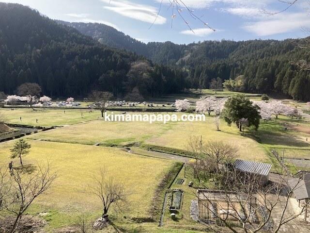 春の朝倉氏遺跡、山道から見た遺跡広場
