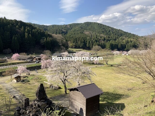 春の朝倉氏遺跡、物見台中の御殿跡からみた広場