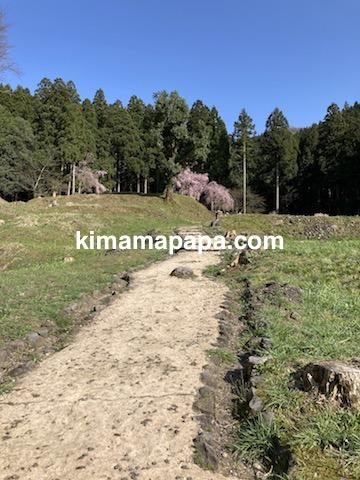 春の朝倉氏遺跡、英林塚(朝倉孝景墓)への小道