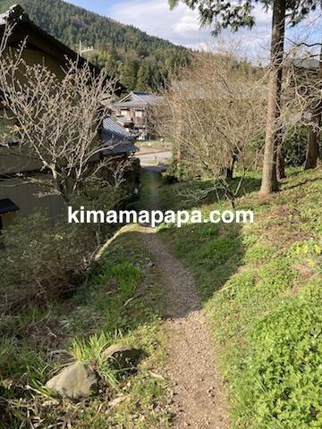 春の朝倉氏遺跡、瓜割清水への小道