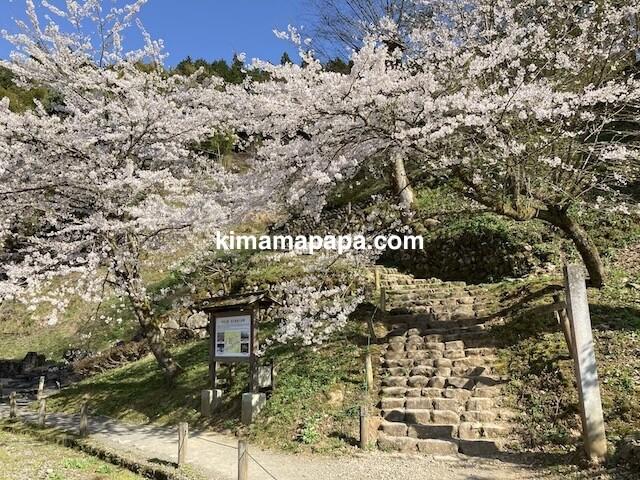春の朝倉氏遺跡、湯殿跡庭園への階段