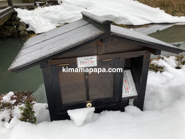 冬の朝倉氏遺跡、鯉の餌