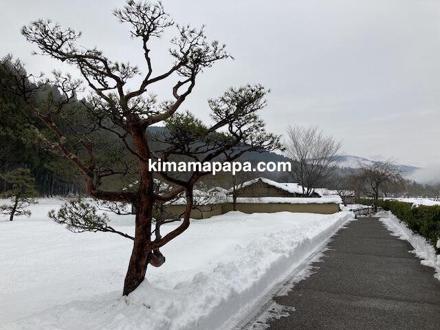 冬の朝倉氏遺跡、復原町並の小道