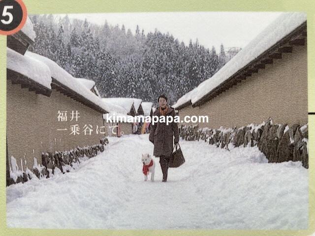 冬の朝倉氏遺跡、復原町並のソフトバンクCM
