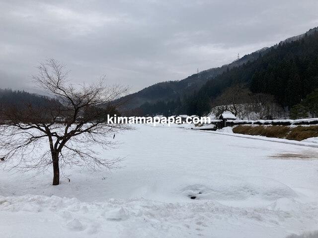 冬の朝倉氏遺跡、広場