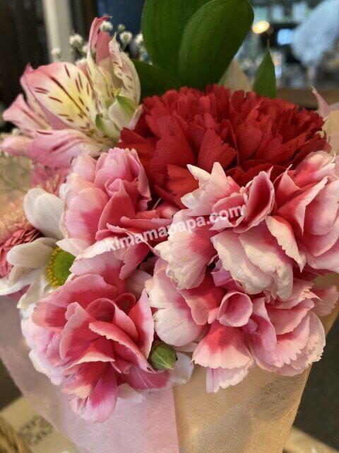 福井市、ささぶねの花