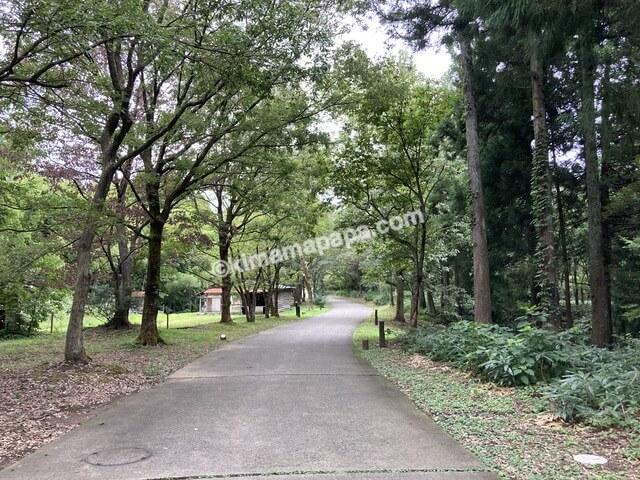 福井県金津創作の森美術館、小道