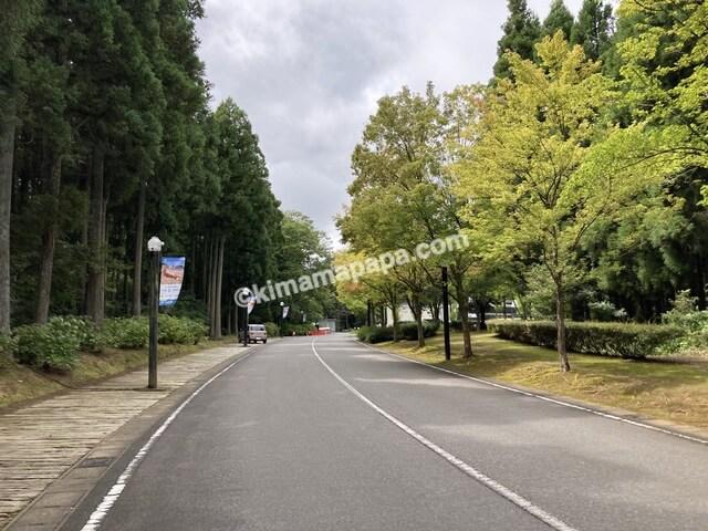 福井県金津創作の森美術館、第一駐車場までの道