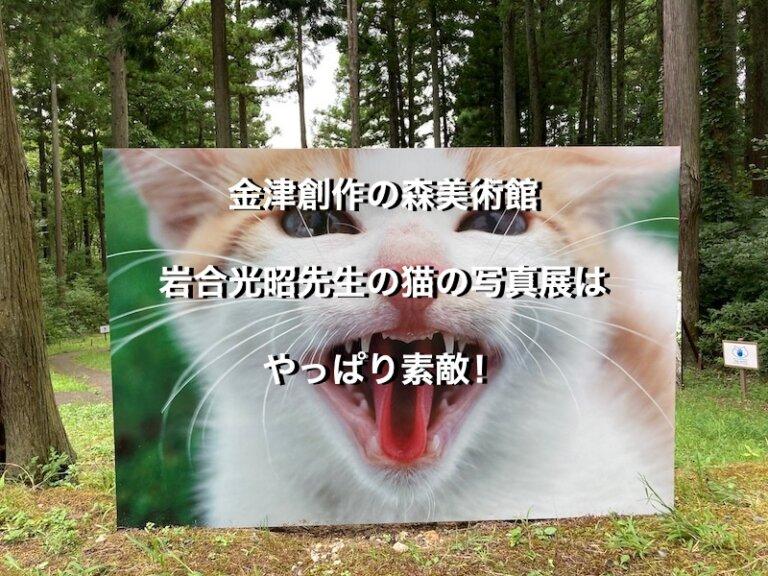 福井県金津創作の森美術館、岩合光昭先生の写真