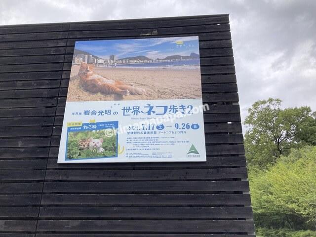 福井県金津創作の森美術館、岩合光昭先生の写真展