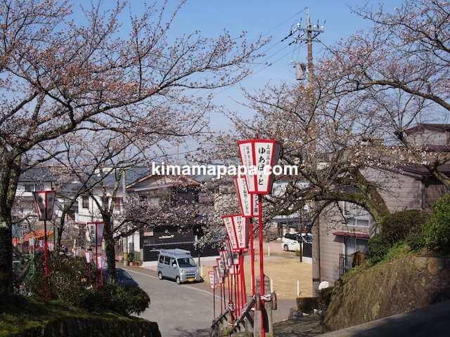 桜の季節、丸岡城から西側の登り口