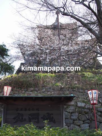 桜の季節、丸岡城の西側にある看板