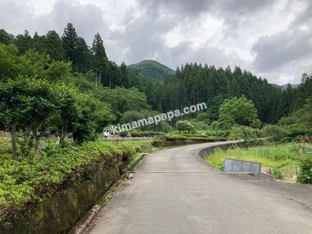 千古の家、菖蒲園までの道