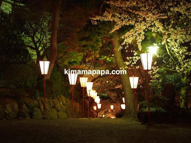 桜の季節、丸岡城から西側への下り坂