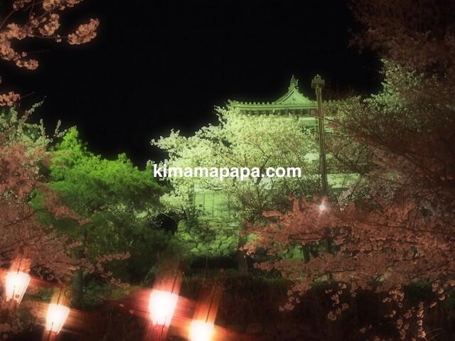 桜の季節、西側から見た丸岡城