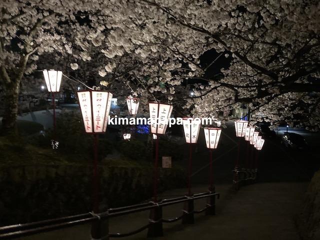 桜の季節、丸岡城の西側登り口