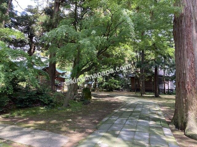 福井県三国町、三国神社の参道