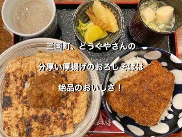 福井県三国町、どうぐやのあげおろし膳
