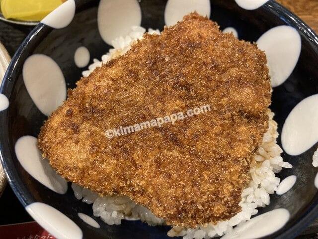 福井県三国町、どうぐやのミニソースカツ丼