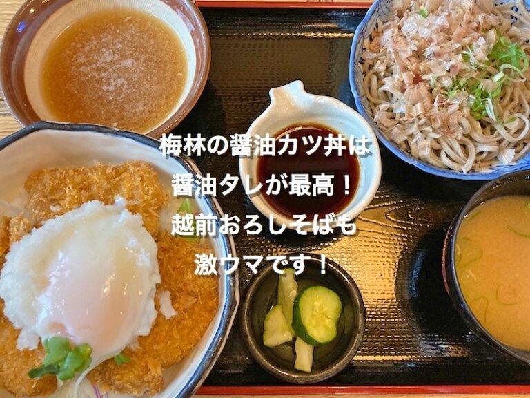 福井県大野市、梅林の醤油カツ丼とおろしそば