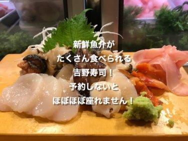 新鮮魚介がたくさん食べられる吉野寿司!予約しないとほぼほぼ座れません!