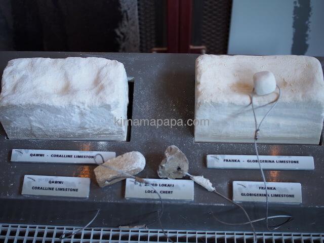 「珊瑚質の石」と「グロビゲリナ石」