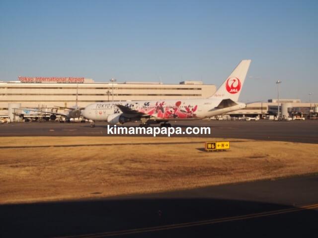 羽田空港、TOKYO2020飛行機