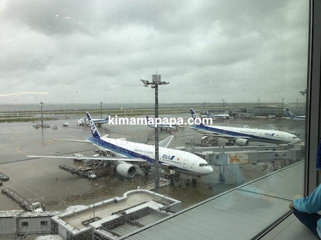 羽田第2ターミナル、室内展望デッキから見たANA機