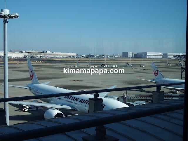 羽田第3ターミナル、JALスカイラウンジannex(臨時)からの眺め