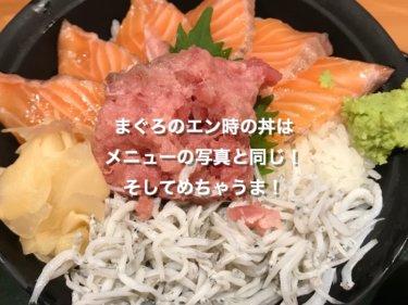 伊丹空港、まぐろのエン時のネギトロサーモン丼
