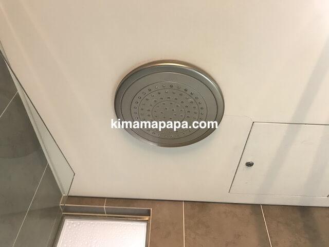 ソウル孔徳、ロッテシティホテル麻浦の天井シャワー