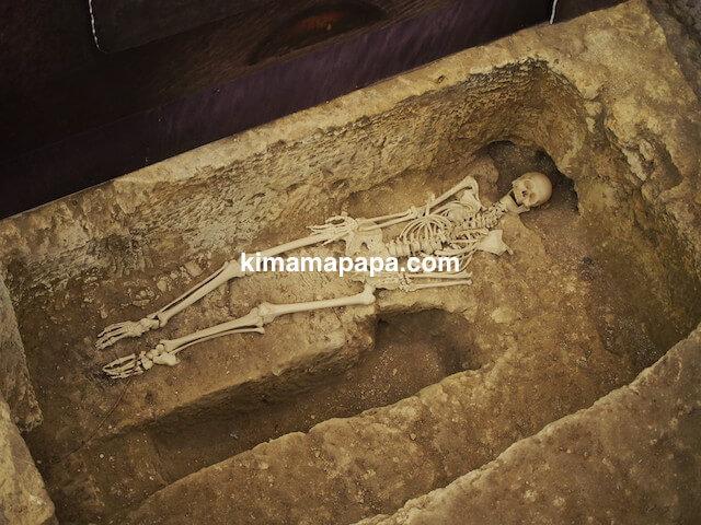 聖パウロカタコンベの白骨