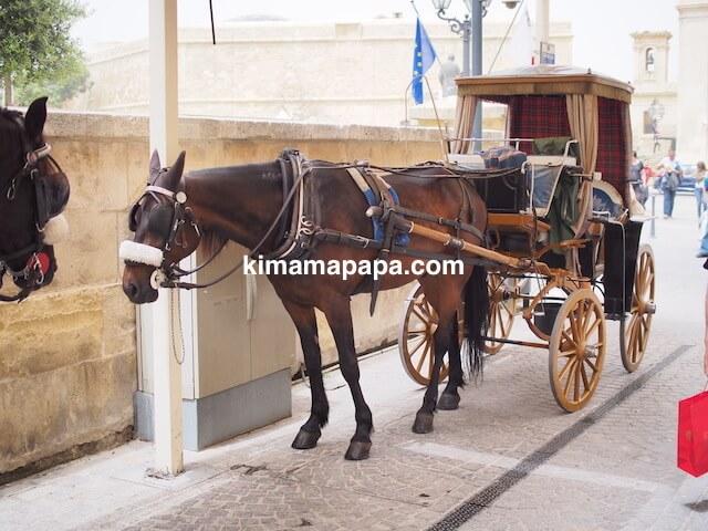 マルタ、ヴァレッタの馬車
